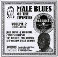 Male Blues Of The Twenties Vol 2 1923 - 1928