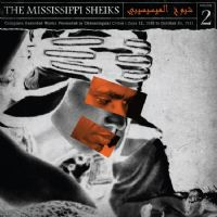 The Mississippi Sheiks Vol. 2